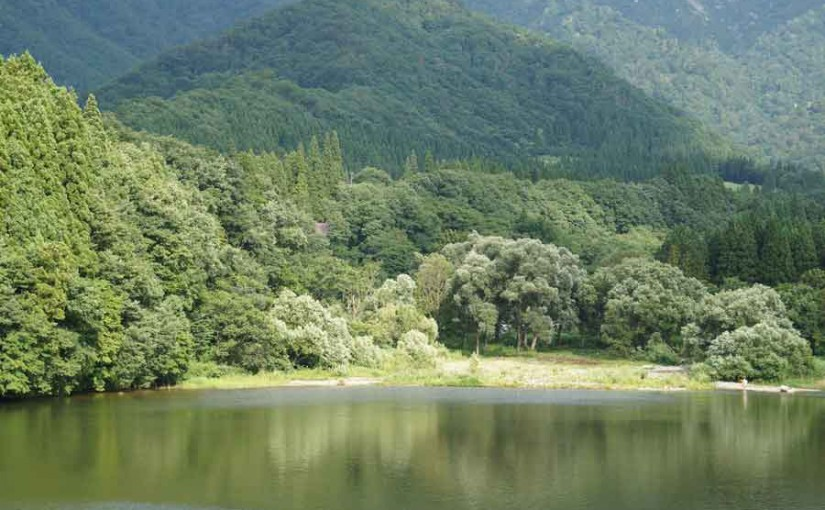 大源太湖畔をお散歩したよ!!