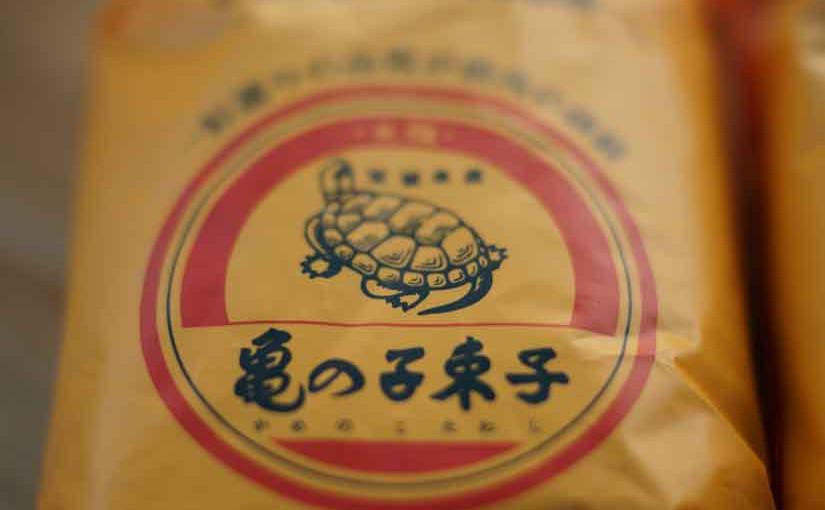 亀の子束子4