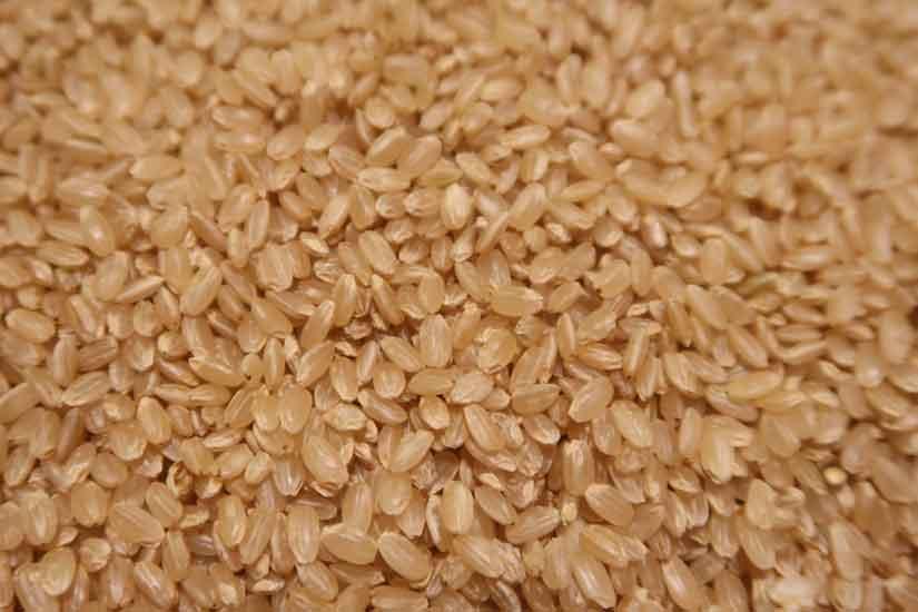 平塚の美味しいお米「はるみ」